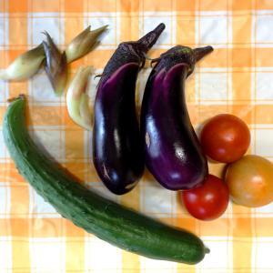 家庭菜園の野菜たち・・・今日は真珠記念日
