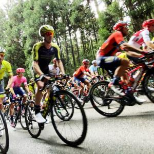 宇都宮のロードバイク愛が凄い(;゚Д゚)!自転車レースの祭典「ジャパンカップ」を観に行こう!