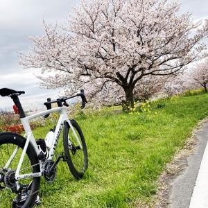 ZWIFTだけじゃない!? 外出自粛の今楽しみたいインドアサイクリングアプリ6選