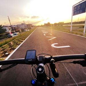 コロナ禍で毎日自転車通勤した結果! 2020年4月・5月の月間走行距離、過去最高を更新(-_-;)