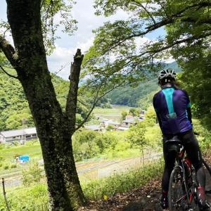 なぜ「パンツ峠」と呼ばれるの? 雛鶴峠から大月・猿橋へのショートカット「鈴懸峠」を上ってみた!