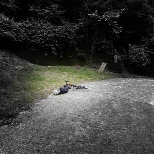 ロードバイク女子憤死(@_@;)!「秩父三山」の一角・両神山ヒルクライムに挑んでみた!