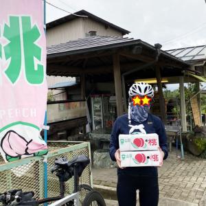 1箱山盛り、たったの500円(@_@;)! 2020年もロードバイクで山梨県へ桃狩りに行って幸せになろう
