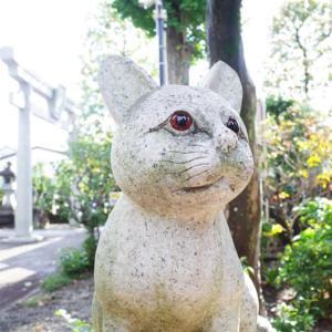 猫好きローディーに嬉しい、新・東京デスティネーション! 珍しい狛猫に会いにロードバイクで行ってみよう(゚∀゚)!