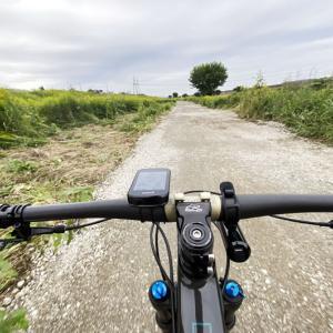 ロードバイクに乗れる日はいつくるのか(T∩T) 骨折は4週間ではくっ付かないと学んだ2020年秋