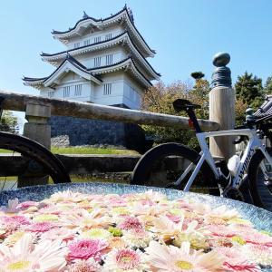 埼玉県が羨ましいw 美し過ぎる花手水と美味すぎる行田の美味