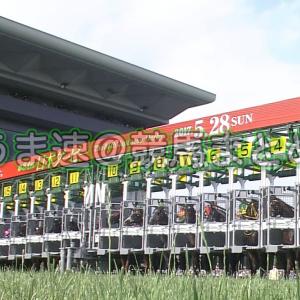 【競馬】オルフェーヴル産駒とディープインパクト産駒の勝率が同じwwwwwwwww