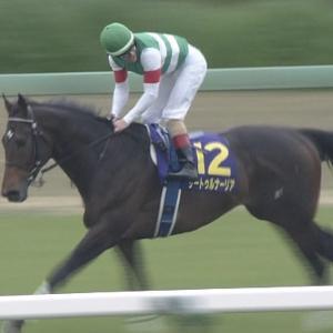 【競馬】今年の有馬って勝つのサートゥルだろ?