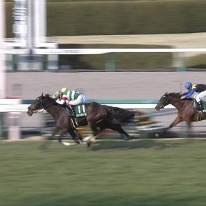 【競馬】 「西高東低」・・・栗東トレセン開業50年、美浦トレセンを圧倒