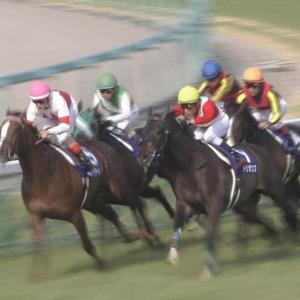 【競馬】トリオンフ、引退