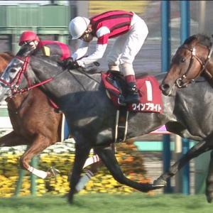 【競馬】香港C制覇ウインブライト中一週で有馬記念へ、距離が長いとはなんだったのか