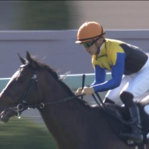 【競馬】G1勝ち馬ゼロ、トライアル勝ち馬も回避。史上最低の菊花賞wwww
