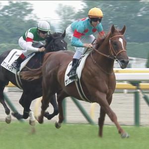 【競馬】サリオスってグラスワンダー以来の衝撃的な朝日杯勝ち馬だよな?