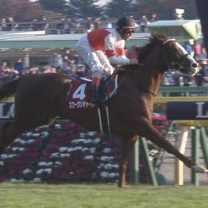 【競馬】アーモンドアイ除けば今の日本の競馬のレベルは90年代以降で史上最低な件