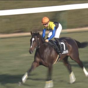 【競馬】菊花賞でヴェロックスに乗ってギリ4着になりそうな騎手wwwwwwwwww