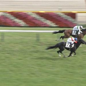 【競馬】今年ダービー勝った馬はともかく、騎手を覚えてる人っているの???