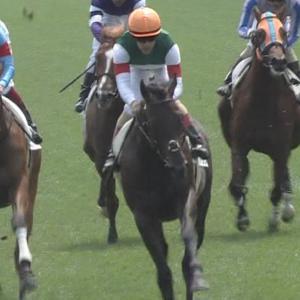【競馬】スミヨン上手すぎワロタ