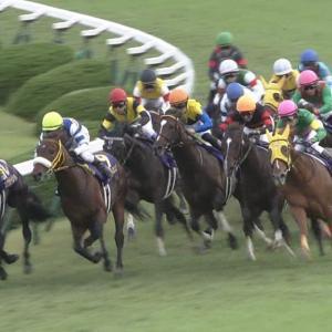 【競馬】ある牧場で種牡馬、繁殖牝馬40頭あまりが誘拐される案件発生!!