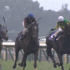 【競馬】天皇賞、雨で台無しにされそう