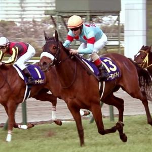 【競馬】アーモンドアイ、秋天後はJCまたは香港へ 国枝調教師「有馬は使わない」