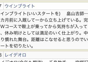 【競馬・天皇賞秋】松岡「ウインブライトが前回負けたのは、結果が示すとおり調整が失敗していたから」
