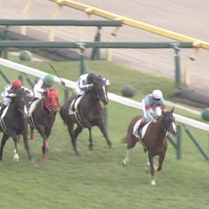 【競馬】新馬戦で逃げて馬なり圧勝のスカイグルーヴの次走