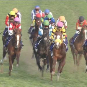 【競馬】悲報・・ジャパンカップ、ついに外国馬参戦なしか