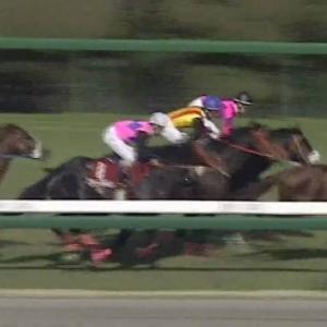 【競馬】GI4勝馬マヤノトップガンが死ぬ 95年の有馬記念など