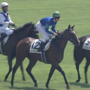 【競馬・阪神JF】ヒロシがウーマンズハートに苦言「足りない」