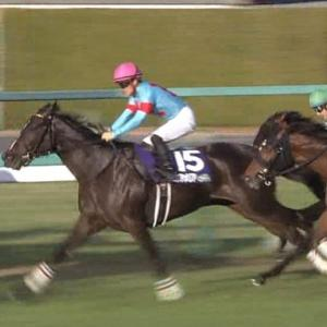 【競馬・阪神JF】リアアメリアを「絶対勝てる」と思えるのって逆に凄くないか?
