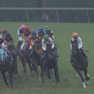 【競馬】有馬記念前日・当日は雪予報。ダート変更もあるか??