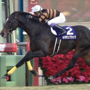 【競馬】キタサンブラックって弱いと言われるがオペラオーよりは強いよな