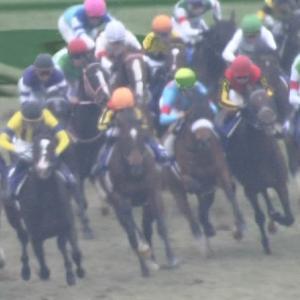 【競馬】キメラヴェリテが逃れると思ってた奴は競馬続けろ