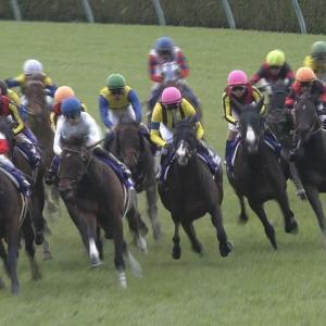 【競馬】JRAは開催続行が基本も緊急事態宣言の内容精査