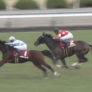 【競馬・日経新春杯】レッドジェニアル7着 武豊「もう少し前でレースができたら良かった」