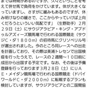 【競馬】朗報!クリソベリルにサウジアラビアCの招待状が届き出走がほぼ決定!!!