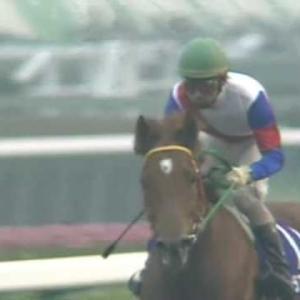 【競馬】グリーンCh特番「カンニング竹山×尾形充弘×グラスワンダー」現在のグラスワンダーの姿が美しすぎる