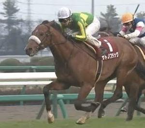 【競馬・日本ダービー】サトノフラッグ 本命の方