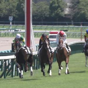 【競馬】キズナ3歳世代の勝ち数が100勝