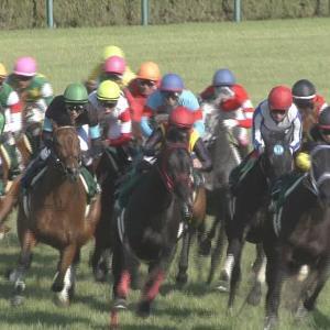【競馬】馬主の矢部美穂さんが馬と騎手とファンに謝罪