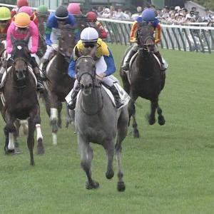 【競馬】NAR年度代表馬決定