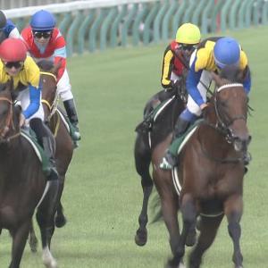 【競馬】菊花賞2着の馬は大成しない説