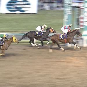 【競馬】川田さん、直線先頭も落馬・・内ラチに激突しててヤバい
