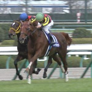 【競馬】ラッキーライラック鞍上福永で有馬記念。引退レースで新コンビ