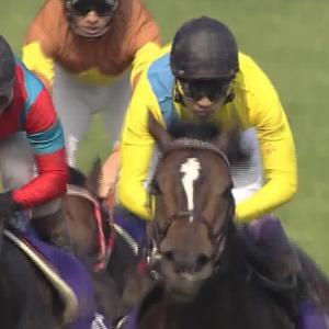 【競馬】衝撃!!桜花賞2着サトノレイナスは日本ダービーへ「牡馬相手でもいけるかなと」
