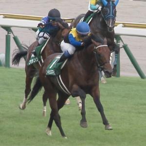 【競馬】グラティアス松山でダービーへ