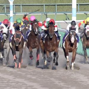【競馬・日本ダービー】ダーリントンホールの取捨
