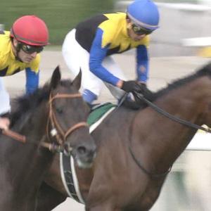 【競馬】金子真人の2歳馬の馬名カッコよすぎwww