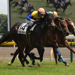 【競馬・2歳新馬】ブエナベントゥーラ、おそらく駄馬