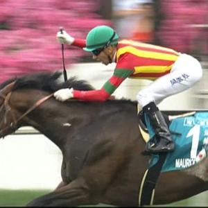 【競馬・ジャパンC】調教後馬体重アーモンドアイは496kg、コントレイルは464kg
